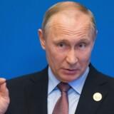 Vladimir Putin kunne ikke være mere ligeglad med, at russere bliver anklaget for at blande sig i det amerikanske præsidentvalg. Scanpix/Alexander Zemlianichenko/arkiv