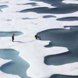 NASA illustrerer i en video, hvordan havisen i Arktis smelter. Videoen er blevet vist over 1,5 millioner gange alene på CNNs Facebookside og har fået mennesker fra hele verden til at kommentere på klimaproblemerne.