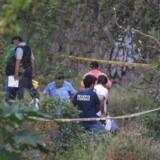 Politiet undersøger en grav, hvor mindst seks lig blev fundet haævt begravet i Acapulco i staten Guerrero i Mexico den 22. april 2017.