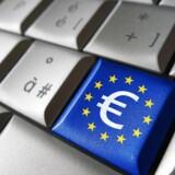 Der er et kæmpe marked forude, hvis det lykkes EU at fjerne alle de barrierer, som i dag forhindrer os alle i at købe ind over nettet på tværs af landegrænserne. Foto: Iris/Scanpix