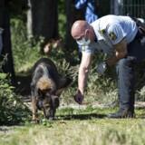 En kvinde i 30'erne er blev tirsdag den 16. august 2016 overfaldet på Østerbro i København. Kvinden blev fundet ved Sporsløjfen, der ligger ved banelegemet ved Nordhavn og sportsklubben B93's udendørs træningsanlæg omkring kl. 15, tirsdag eftermiddag. Arkivfoto fra 17. august, hvor politiet stadig ledte efter spor i sagen.