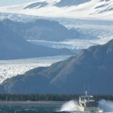 Arkivfoto. Alaskas kytlinien