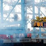 Den 24. april i 2015 blev Maasvlakte ll åbnet af den hollandske konge. Han var inviteret sammen med 500 af de vigtigste folki shippingbranchen til indvielsen af en af de mest moderne terminaler i verden.