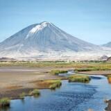 Fodaftrykkene er fundet ved bredden af den nuværende salt- og sodasø Lake Natron i det nordlige Tanzania.