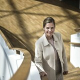 Med få dage tilbage som direktør for Novos kinesiske forretning kan Camilla Sylvest glæde sig over, at den danske diabeteskoncern får godkendt et fremtidshåb i Kina.