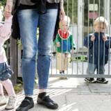 Tal fra Danmarks Statistik fra 2017 viser, at der i daginstitutionerne på Frederiksberg i gennemsnit var 3,45 børn pr. pædagog i vuggestuen og 7,0 i børnehaven. I København var dette tal 3,28 i vuggestuen og 6,78 i børnehaven. Tallene medregner institutionernes ledere.