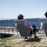 Svenskerne ser, ligesom mange danskere, længselsfuldt efter størrre integration mellem Østdanmak og Skåne. Foto: Sofie Mathiassen