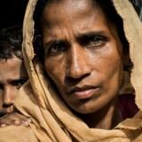 »Jeg så min onkel blive skudt og dræbt af militæret i Myanmar - lige foran mig.« 40-årige Rahima Katun flygtede sammen med sin mand og tre børn til Myanmar for to måneder siden.