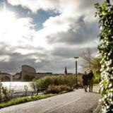 I dag er området langs Københavns Indre Søer en grøn oase midt i bybilledet, men hvis byplanlæggerne og politikerne havde fået deres vilje i 1960erne, så skulle en sekssporet motorve være gået tværs gennem området.