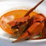 Strandkrabbebisque med dild og en krabbe, der forsøger at undslippe.
