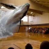 Firmaet Magic Leap er et af de firmaer, der allerede har gjort en revolutionerende spring i verden af hologrammer. Her ses et billede fra en af deres mest sete videoer. Videoen kan ses i bunden af artiklen.Foto: Magic Leap, Youtube