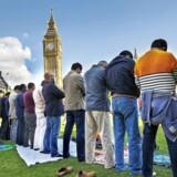 Muslimer deltager i den første fredagsbøn nogensinde afholdt på parlamentspladsen i London 9. oktober 2015. Integrationsrapporten, ledet af Louise Casey, har vakt opsigt i Storbritannien, fordi den i modsætning til tidligere undersøgelser udpeger specifikke grupper som særligt problematiske. Casey kritiserer ansvarlige for den britiske integrations-politik for i al for høj grad at have veget uden om »de vanskelige spørgsmål af frygt for at blive betegnet som racister eller ufølsomme«. Foto: Tolga Akmen