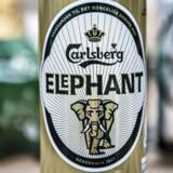 Carlsberg er kommet under mistanke for at fuske med priserne i Indien. På det indiske marked er især selskabets »Elephant Beer« en populær størrelse.