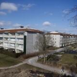 Det er svært at komme af ghettolisten, fordi alt for mange kriterier er umulige at påvirke. AAB i Valby efterlyser en lov, der gør det muligt at afvise ansøgere. Foto: Liselotte Sabroe/Scanpix Ritzau