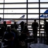 En strejke i Bruxelles store lufthavn Zaventem har givet SAS dusinvis af aflysninger, skriver Check-In.