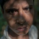 Hver anden dag går 12-årige Yasin i skoven for at samle brænde til ildstedet i familiens hytte. For lidt over et år siden flygtede han sammen med sin familie fra, hvad FN har kaldt »et klart eksempel på etnisk udrensning«.