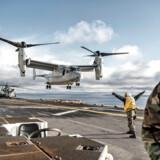En MV-22 Osprey lander på dækket af USS Iwo Jima under NATOs Trident Juncture øvelse ud for Norges kyst.
