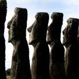 Der er omkring 900 af de kendte moai-statuer hugget i vulkansk sten på Påskeøen. De største er næsten ti meter høje og vejer 82 ton.