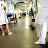 Både lægernes og sygeplejerskernes organisationer siger, at ledelsen i Region Hovedstaden er blevet mere åben over for kritik af Sundhedsplatformen, som har været ramt af mange problemer, senest fejmedicinering af flere tusinde patienter.