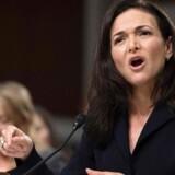 Sheryl Sandberg er under pres som næstkommanderende i Facebook. I september måtte hun vidne i senatets efterretningskomité, der undersøger Facebooks rolle og muligt russisk misbrug af Facebook i forbindelse med præsidentvalgkampen i 2016 og de mange falske nyheder, der spredes gennem Facebook. Arkivfoto: Jim Watson, AFP/Ritzau Scanpix