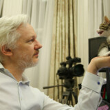 Whistlebloweren Julian Assange nærer et blindt had til Hillary Clinton og har via WikiLeaks offentliggjort tusindvis af hendes og andre demokraters e-mail.