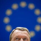 »Danmarks internationale indflydelse vil lide under en mere skeptisk linje og giver os færre handlemuligheder.«