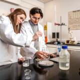Caroline Hovmand Larsen og Amin Xapana er begge 16 år og går i 1. g på Herlufsholm. De er begge elever på den særlige life science-linje.