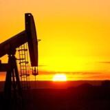 De amerikanske olielagre er steget støt de seneste måneder, og det er en af årsagerne til, at olieprisen er faldet markant i den samme periode.