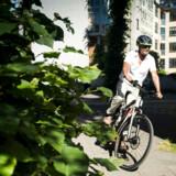 Berlingske tester en speed pedelec-cykel. Hvordan er det at køre på cykelstien med 45 kilometer i timen både i myldretiden og ellers.