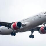 SAS-fly i Københavns Lufthavn i København, mandag den 29. januar 2018. Flyselskabet SAS præsenterer årsregnskab, tirsdag 30. januar 2018. Foto: Mads Claus Rasmussen/Ritzau Scanpix