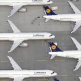 Det tyske luftfartsselskab Lufthansa er klar til at ansætte over 3000 nye medarbejdere i løbet af 2017.