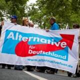 I løbet af flygtningekrisen er Alternative für Deutschland vokset til en størrelse, der gør partiet til en seriøs trussel mod de etablerede partiers mangeårige uforstyrrede magtmonopol.