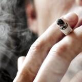 »Disse aktioner har været med til at nedsætte strømmen af ulovlige cigaretter, der er på vej ind i EU, ved at gå efter kernen af problemet, de kriminelle netværk« siger Olafs generaldirektør, Giovanni Kessler, i en pressemeddelelse.