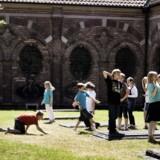 Den lille urtegård bag gravkapellerne ved Sankt Petri Kirke. Børnene fra Sankt Petri skole leger i urtegården, når de får lov. Arkivfoto: Scanpix