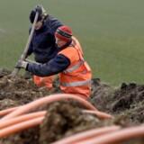 Med TDCs eneret til kobberkabler til bredbånd er den frie konkurrence i nybyggerier sat ud af kraft. I dette konkrete tilfælde lyder ekstraregningen på 60.000 kr. Arkivfoto: Johan Gadegaard