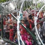 ARKIVFOTO. Flygtningehegn i Ungarn.