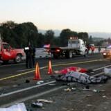 På vej hjem fra en årlig fejring af Jomfru Maria blev 11 dræbt og 13 kvæstet i en alvorlig trafikulykke.