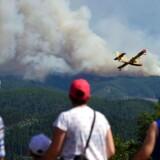 Foto fra skovbranden i Portugal.