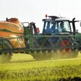 Arkivfoto. En stigende del af EU's landbrugsstøtte ender i lommen på de danske banker, der via såkaldte transporterklæringer får sendt pengene direkte fra EU.