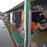 Kalin på 45 år i sin hjemmelavede bolig i Frankfurt am Main i Tyskland. Nu vil den tyske regering skærpe vilkårene for jobsøgende EU-borgere. Foto: Andreas Arnold/EPA