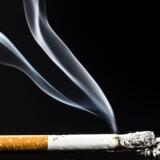 Kræftens Bekæmpelse vil ifølge sin direktør nu forsøge at få PFA til at sælge aktierne i tobaksindustrien eller lave en særordning for medarbejderne, så deres penge ikke bliver brugt til investeringer i tobak.