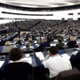 Europaparlamentet skal på torsdag stemme om et forslag, der kan betyde en opsplitning af internetgiganten Google. Arkivfoto: Frederick Florin, AFP/Scanpix