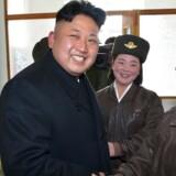 Mens verden fordømmer ny missiltest fra Nordkorea, lander en nyhed om, at Kim Jong-un har fået endnu et barn.
