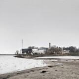 Regeringen har gang på gang lagt vægt på, at Udrejsecenter Lindholm ikke er et fængsel. Ifølge fugleeksperter gør øens naturbeskyttelse dog, at de fremtidige beboere helst skal holde sig indendørs mellem april og august. (ARKIV)