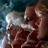 Andelen af rygere stiger, og politikerne ved præcis, hvordan andelen kan falde. Alligevel vælger de oplysningskampagnerne, som man med sikkerhed ved ikke virker. Arkivfoto: Nils Meilvang, Ritzau Scanpix