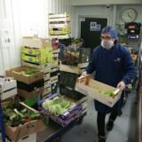 Mens nogle virksomheder allerede er i gang med at bygge lagrene op i forhold til et muligt hårdt Brexit, har andre virksomheder som frugt og grøntsagsdistributøren Natoora ikke den mulighed. Foto: Daniel Leal-Olivas /AFP/Ritzau Scanpix