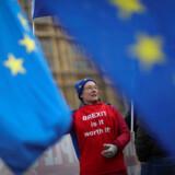 Demonstranterne har stået foran Westminister i månedsvis, og her er én af dem – hun mener, at Brexit ikke er umagen værd. Theresa May sagde mandag i en tale, at Brexit var en nødvendighed, fordi briterne ved en folkeafstemning stemte for det. »Hvis vi står uden aftale er det et katastrofalt og utilgiveligt tillidsbrud i forhold til vort demokrati,« sagde hun.