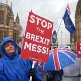 Demonstranter fortsætter ganske utrætteligt deres budskaber for og imod forskellige Brexit-løsninger foran parlamentet i London. Og alt er stadig åbent.