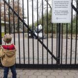 Washington Zoo er blandt de mange museer, der er blevet ramt af den delvise nedlukning. De økonomiske effekter af den politiske kamp er efterhånden synlig.