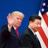 Aktiemarkedets kortsigtede fremtid afhænger af disse to mænd – Donald Trump og Xi Jinping. Arkivfoto: Nicolas Asfouri/AFP/Ritzau Scanpix